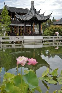 The Chinese Classical Garden