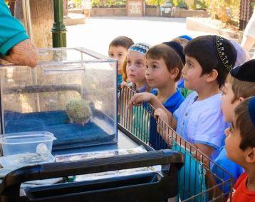 Yeshiva Ketana celebrates Parshas Noach at the LA Zoo 2