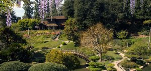 Japanese Garden at The Huntington Botanical Garden