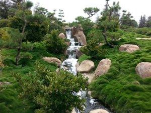 The Japanes Garden