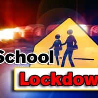 Lessons from a Lockdown