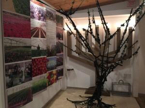 Gush Katif Museum