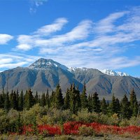 Travel Guide: Yukon