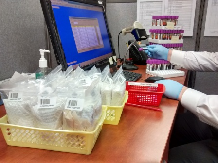 Diligently processing the hundreds of specimens of a recent school screening