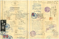 Sugihara-Lewin visa-documents