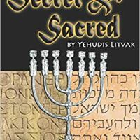 Book Review: Secret & Sacred by Yehudis Litvak (2018)